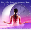 The Little Sleep Meditation Album by Philip Permutt